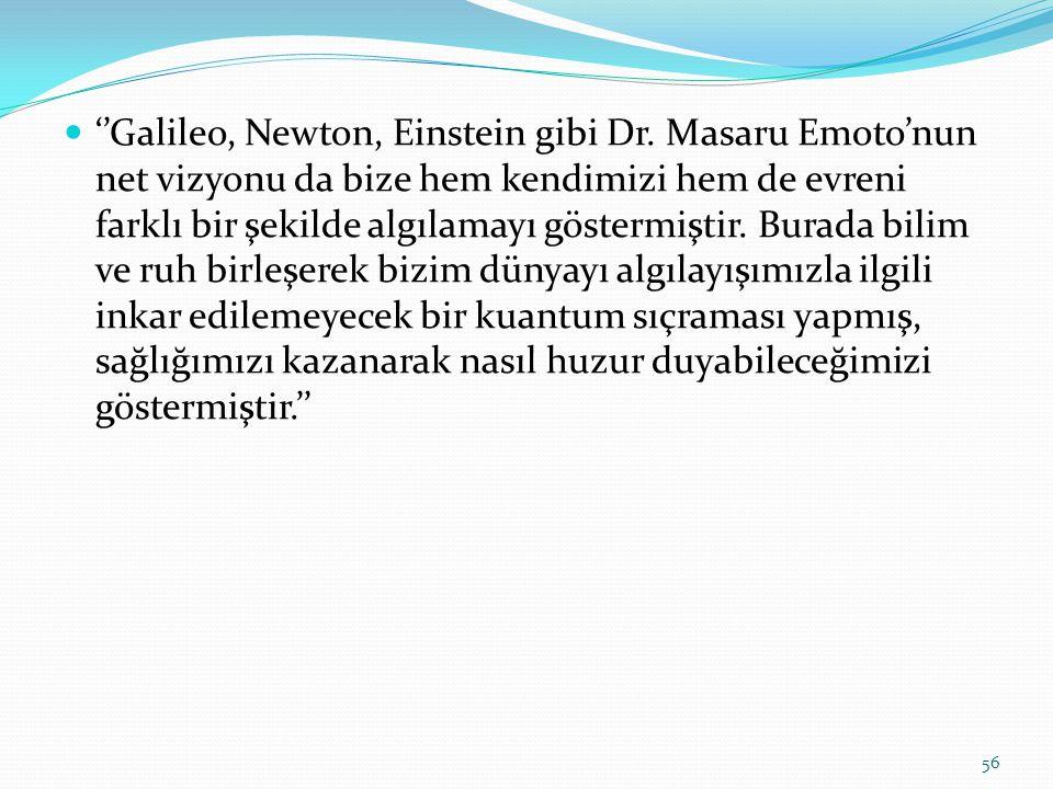 ''Galileo, Newton, Einstein gibi Dr