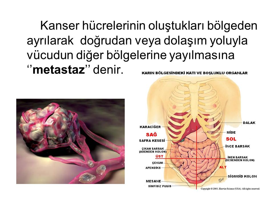 Kanser hücrelerinin oluştukları bölgeden ayrılarak doğrudan veya dolaşım yoluyla vücudun diğer bölgelerine yayılmasına ''metastaz'' denir.