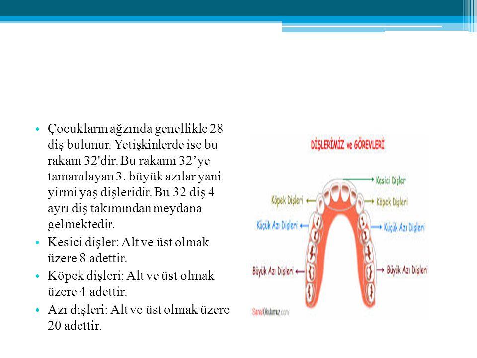 Çocukların ağzında genellikle 28 diş bulunur