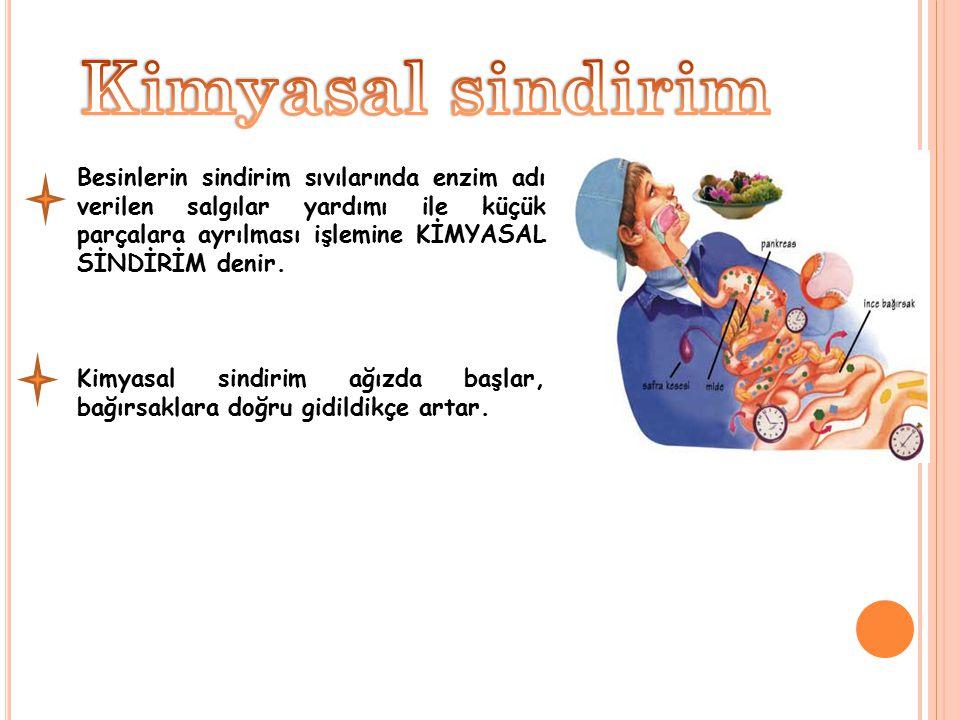 Kimyasal sindirim Besinlerin sindirim sıvılarında enzim adı verilen salgılar yardımı ile küçük parçalara ayrılması işlemine KİMYASAL SİNDİRİM denir.