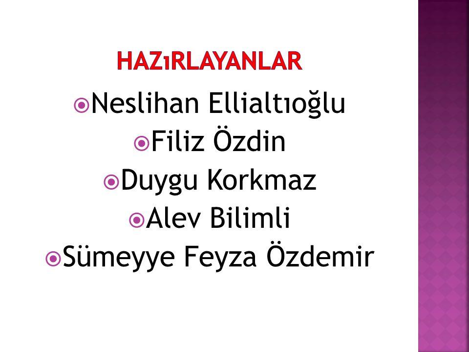 Neslihan Ellialtıoğlu