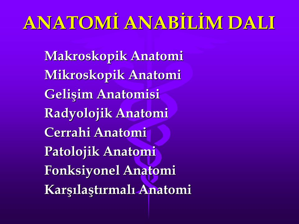 ANATOMİ ANABİLİM DALI Makroskopik Anatomi Mikroskopik Anatomi
