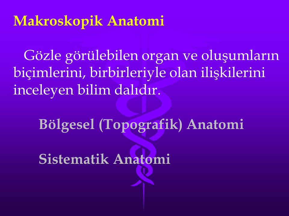 Makroskopik Anatomi Gözle görülebilen organ ve oluşumların biçimlerini, birbirleriyle olan ilişkilerini inceleyen bilim dalıdır.