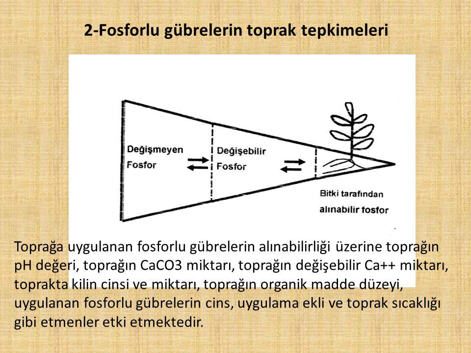 2-Fosforlu gübrelerin toprak tepkimeleri