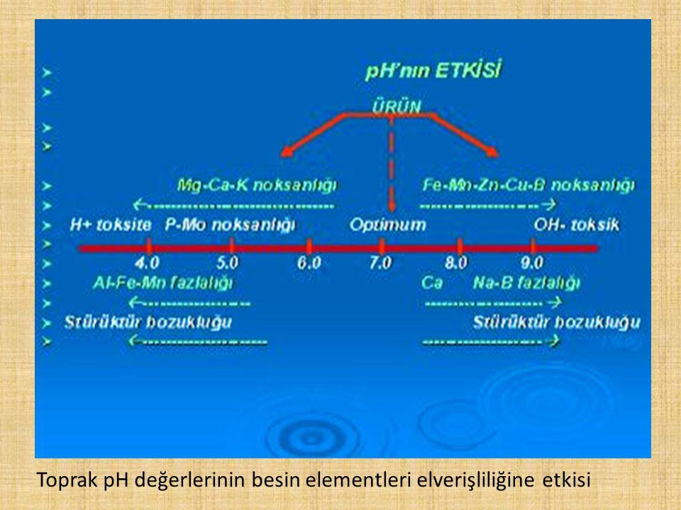 Toprak pH değerlerinin besin elementleri elverişliliğine etkisi