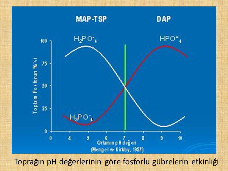 Toprağın pH değerlerinin göre fosforlu gübrelerin etkinliği