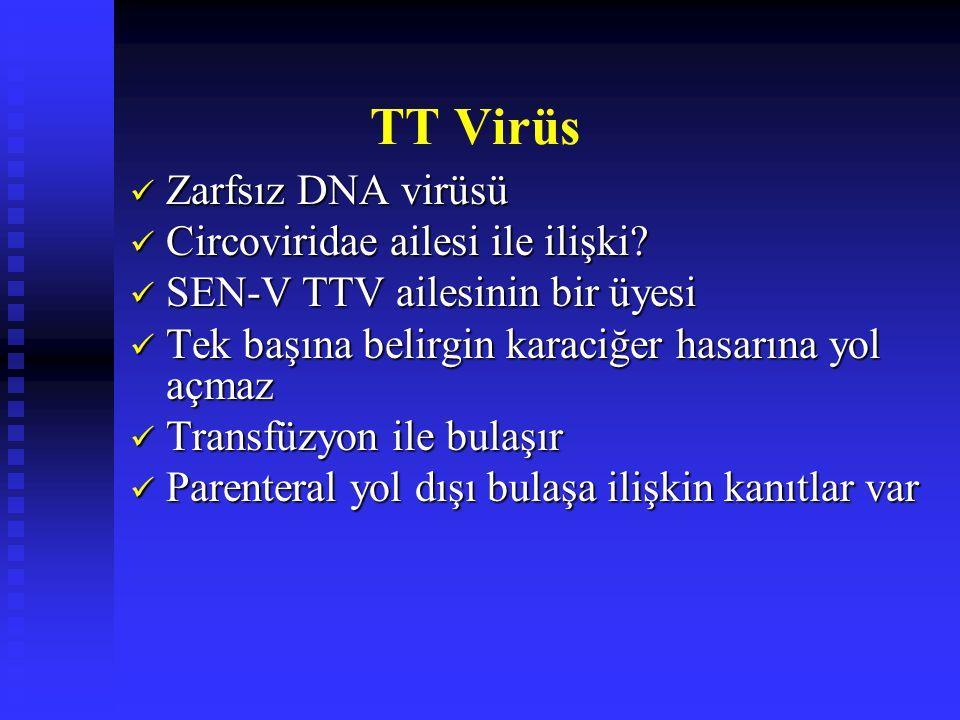 TT Virüs Zarfsız DNA virüsü Circoviridae ailesi ile ilişki