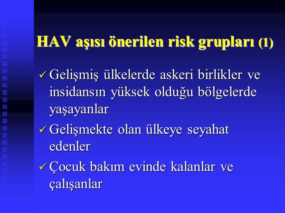 HAV aşısı önerilen risk grupları (1)