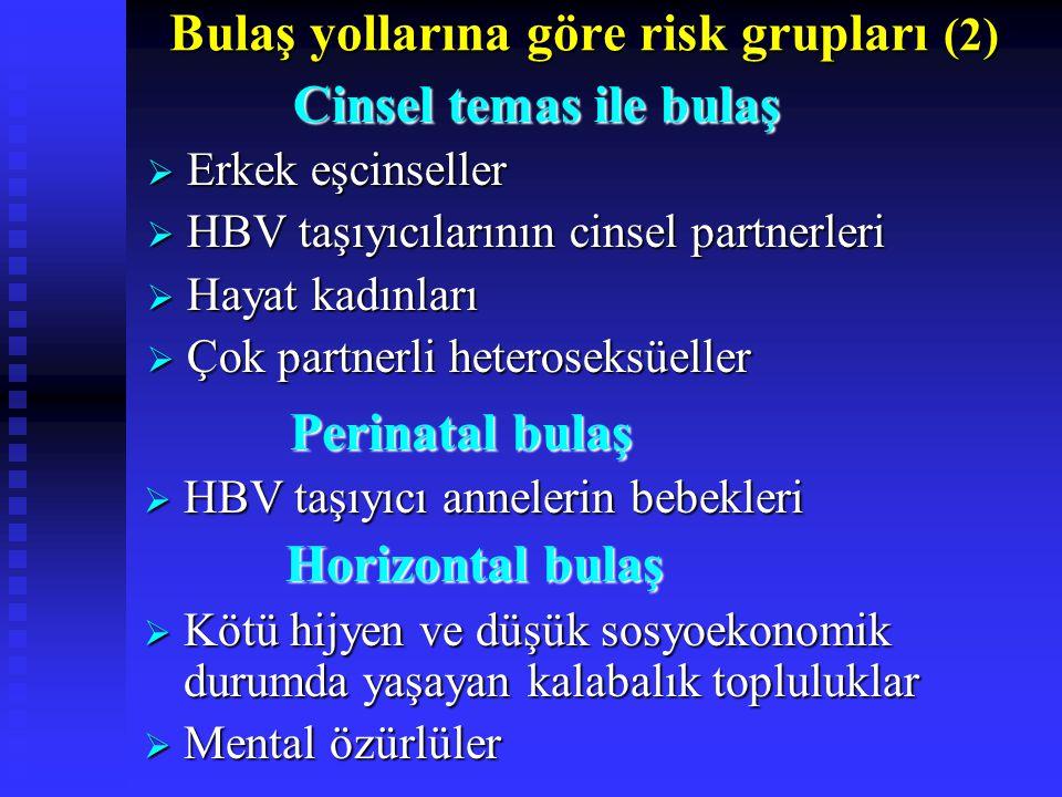 Bulaş yollarına göre risk grupları (2)