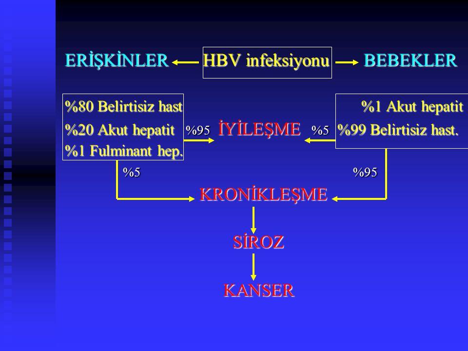 ERİŞKİNLER HBV infeksiyonu BEBEKLER