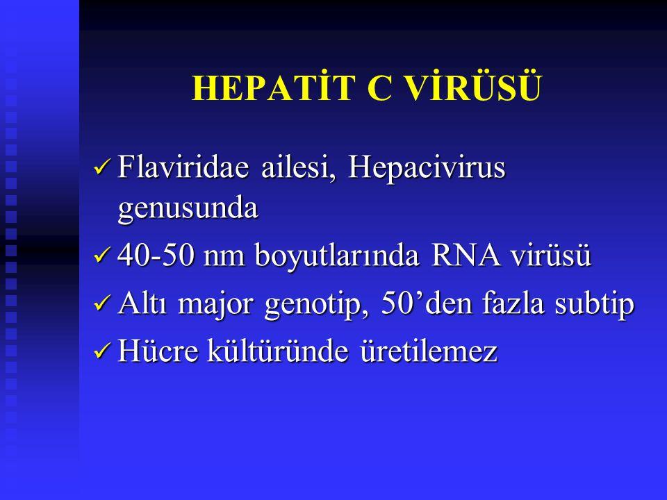 HEPATİT C VİRÜSÜ Flaviridae ailesi, Hepacivirus genusunda
