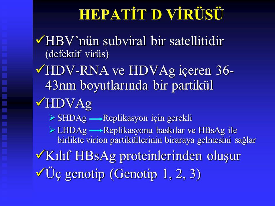HEPATİT D VİRÜSÜ HBV'nün subviral bir satellitidir (defektif virüs)