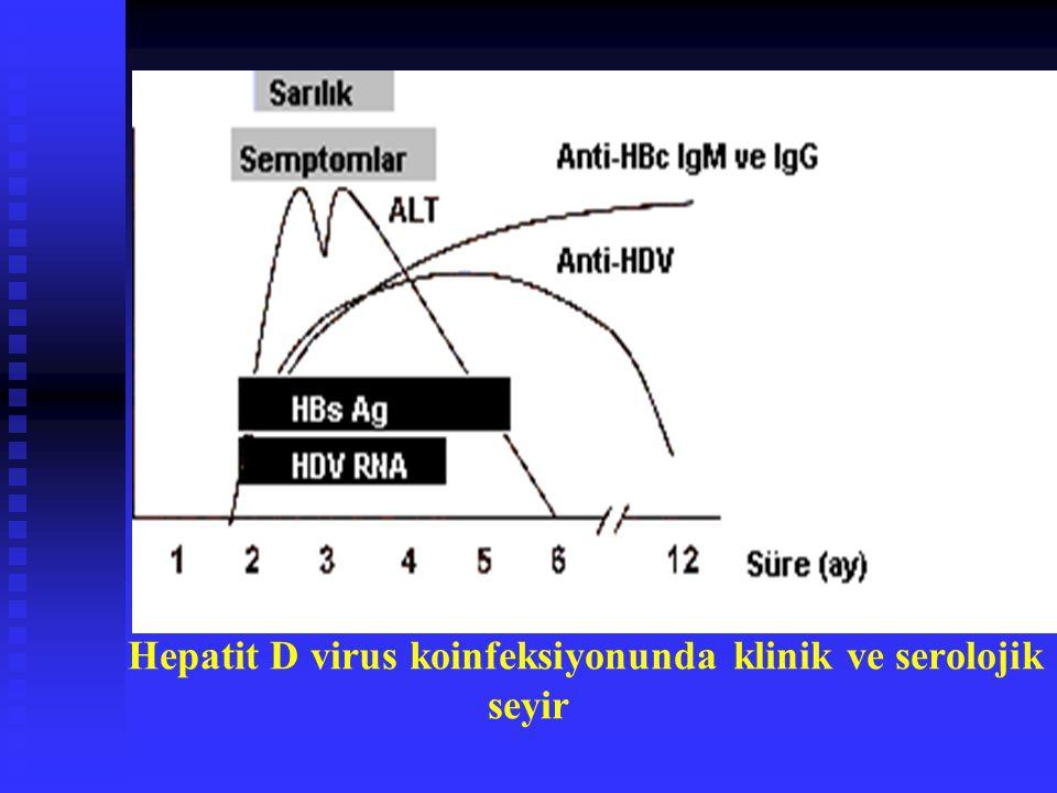 Hepatit D virus koinfeksiyonunda klinik ve serolojik seyir