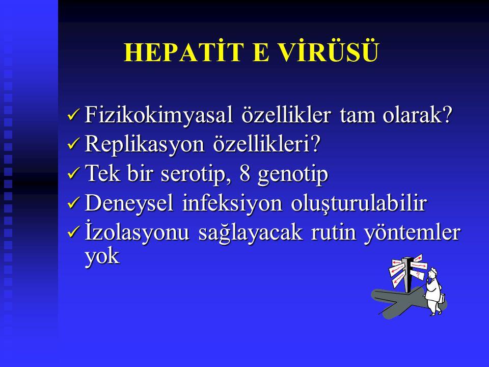 HEPATİT E VİRÜSÜ Fizikokimyasal özellikler tam olarak