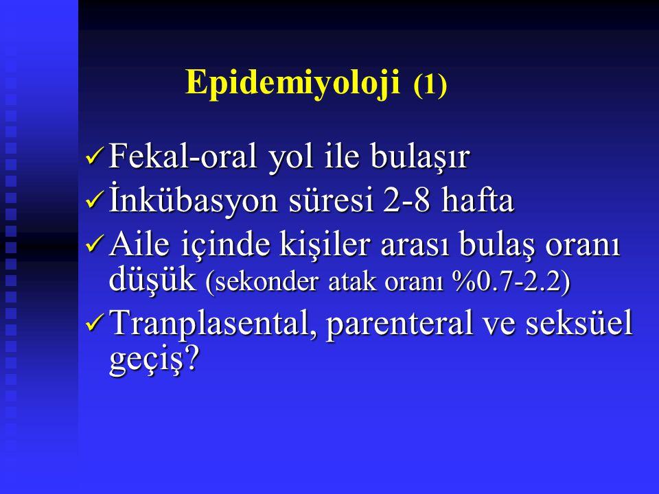 Epidemiyoloji (1) Fekal-oral yol ile bulaşır. İnkübasyon süresi 2-8 hafta.