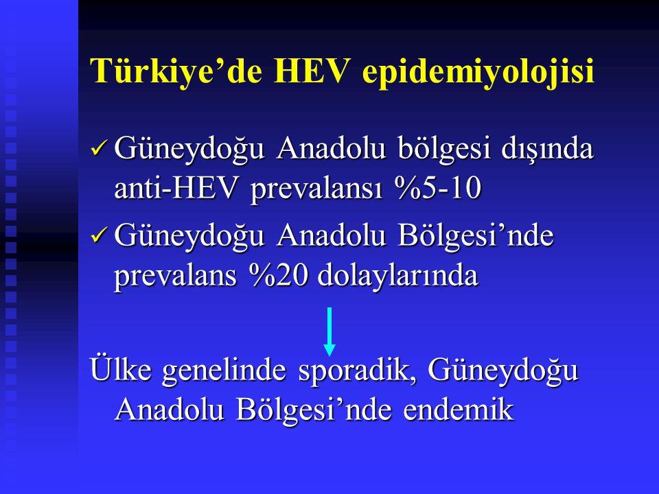 Türkiye'de HEV epidemiyolojisi