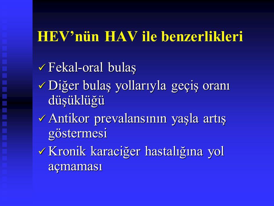 HEV'nün HAV ile benzerlikleri