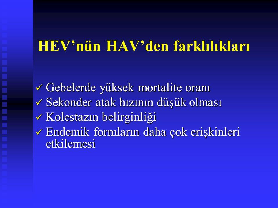 HEV'nün HAV'den farklılıkları