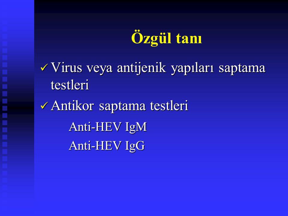 Özgül tanı Virus veya antijenik yapıları saptama testleri