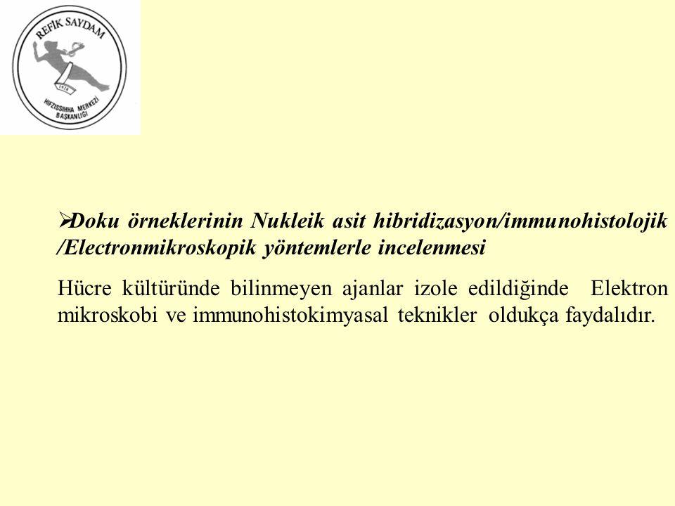 Doku örneklerinin Nukleik asit hibridizasyon/immunohistolojik /Electronmikroskopik yöntemlerle incelenmesi