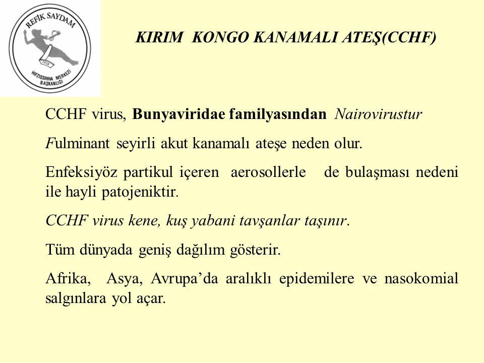 KIRIM KONGO KANAMALI ATEŞ(CCHF)