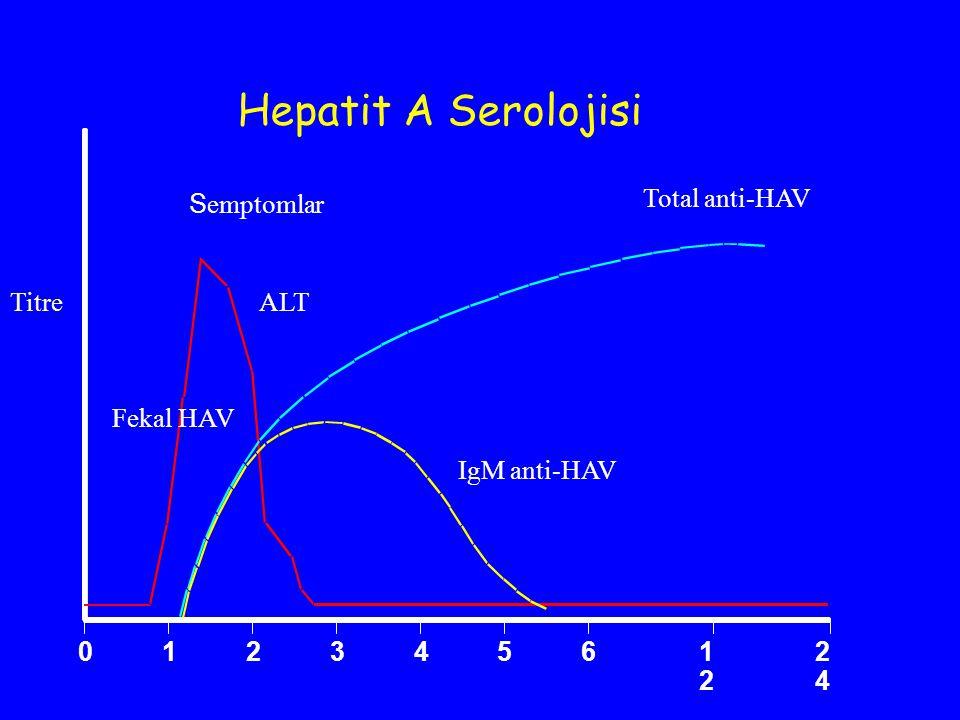 Hepatit A Serolojisi Semptomlar 1 2 3 4 5 6 12 24 Total anti-HAV Titre