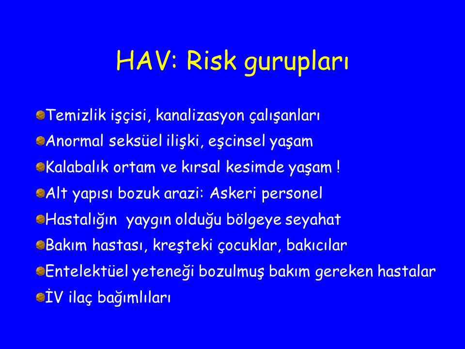 HAV: Risk gurupları Temizlik işçisi, kanalizasyon çalışanları