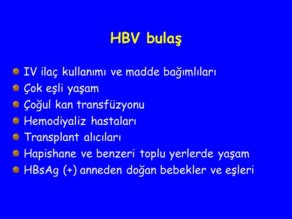 HBV bulaş IV ilaç kullanımı ve madde bağımlıları Çok eşli yaşam