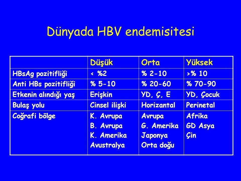 Dünyada HBV endemisitesi