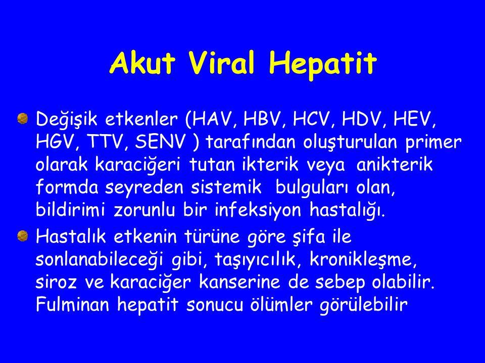 Akut Viral Hepatit