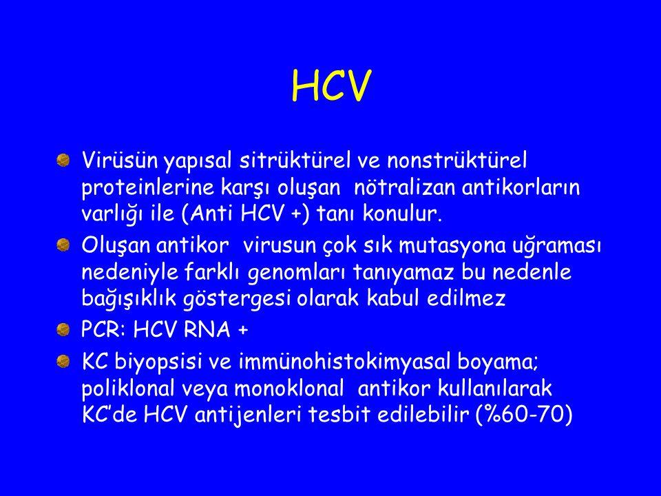 HCV Virüsün yapısal sitrüktürel ve nonstrüktürel proteinlerine karşı oluşan nötralizan antikorların varlığı ile (Anti HCV +) tanı konulur.