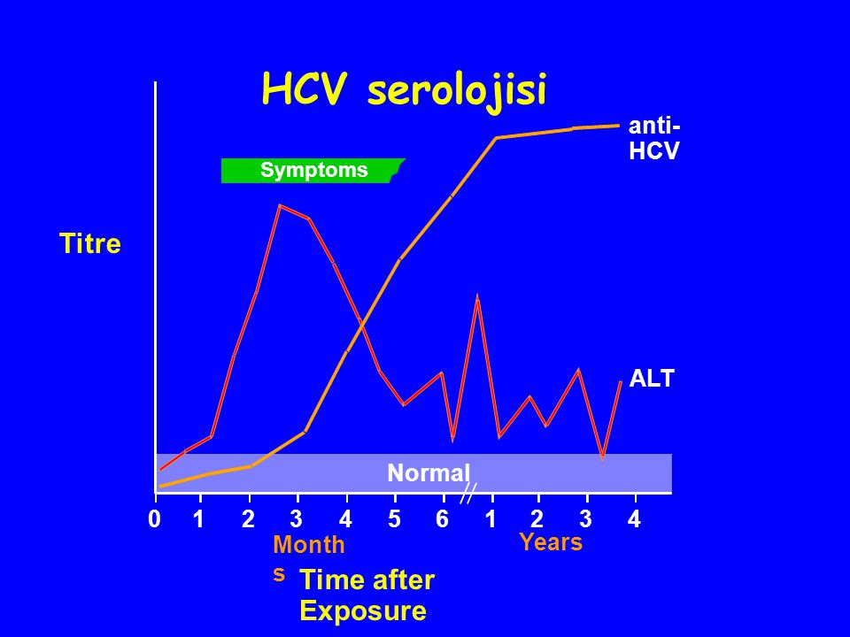 HCV serolojisi Titre Time after Exposure anti-HCV ALT Normal 1 2 3 4 5
