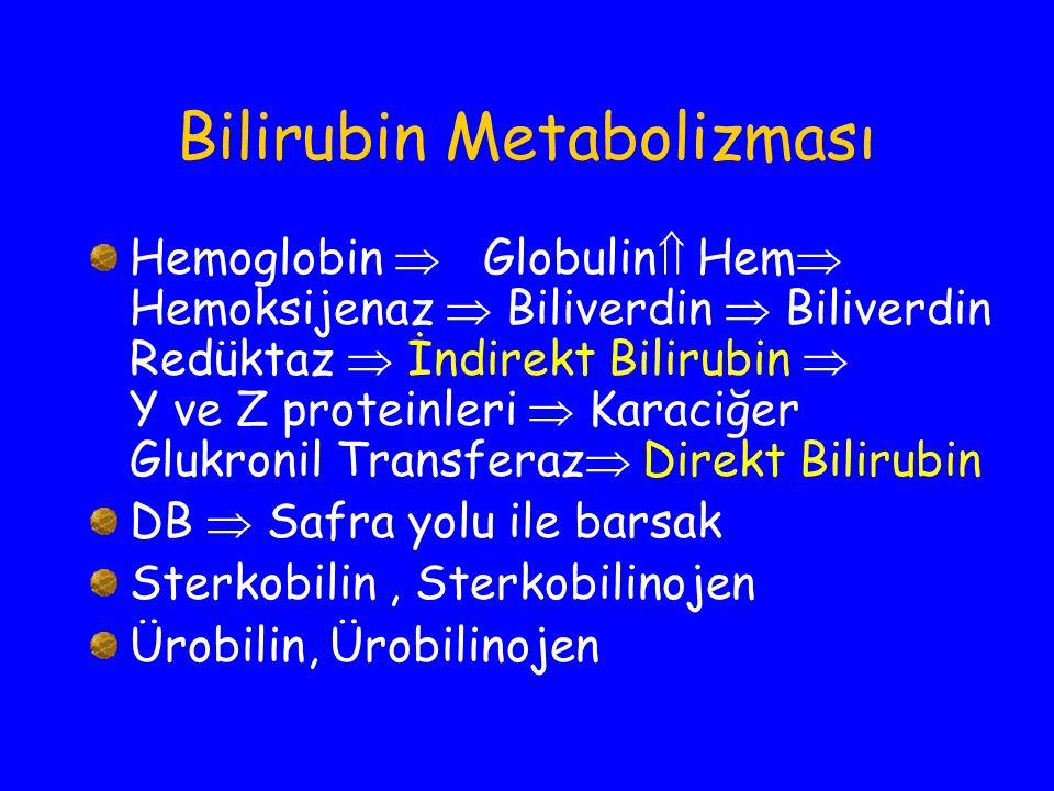 Bilirubin Metabolizması