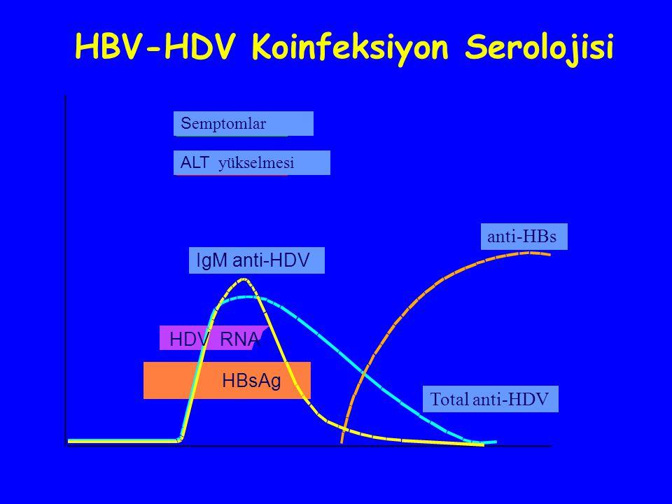 HBV-HDV Koinfeksiyon Serolojisi