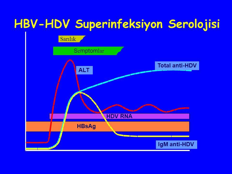 HBV-HDV Superinfeksiyon Serolojisi