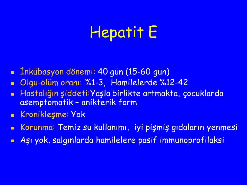 Hepatit E İnkübasyon dönemi: 40 gün (15-60 gün)