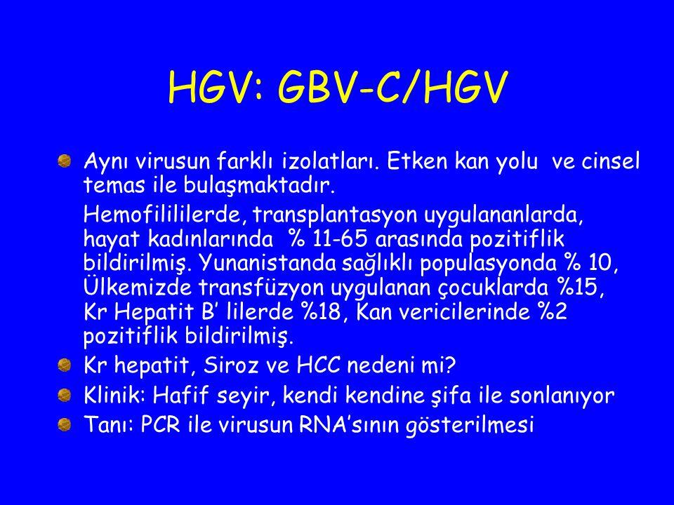 HGV: GBV-C/HGV Aynı virusun farklı izolatları. Etken kan yolu ve cinsel temas ile bulaşmaktadır.