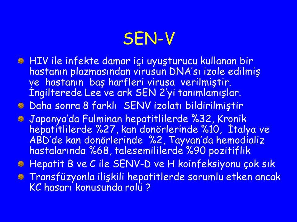 SEN-V