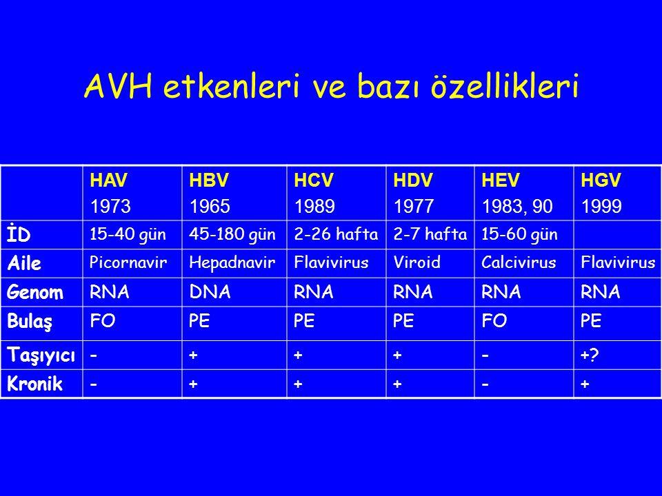 AVH etkenleri ve bazı özellikleri