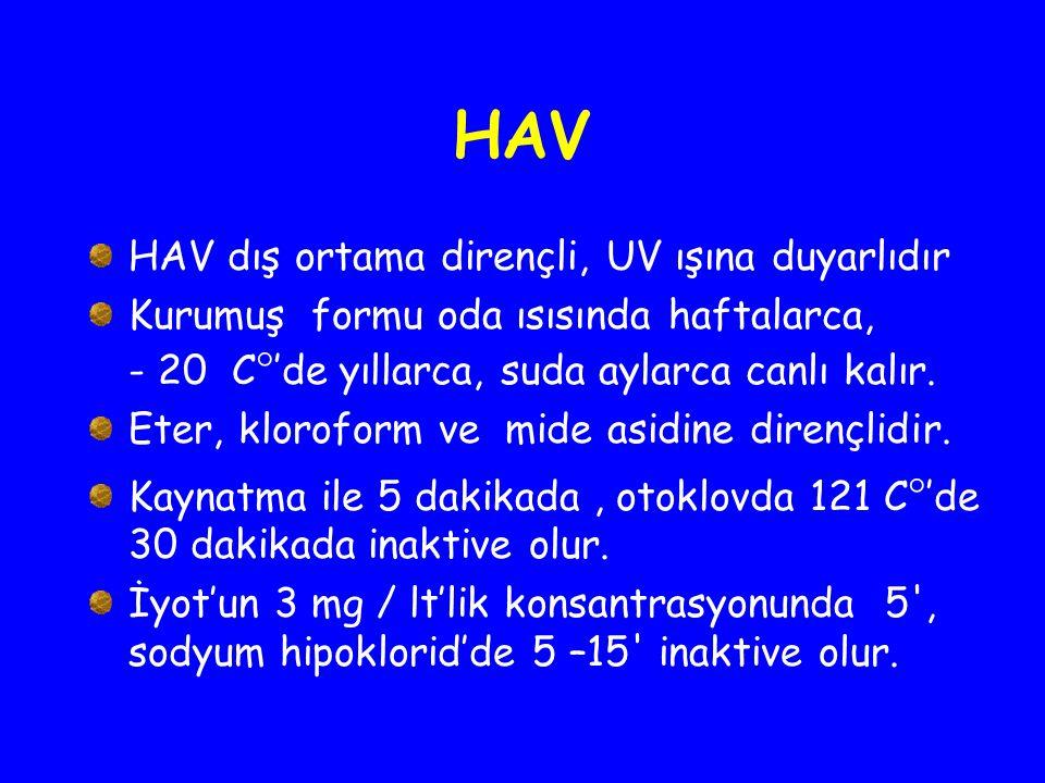 HAV HAV dış ortama dirençli, UV ışına duyarlıdır