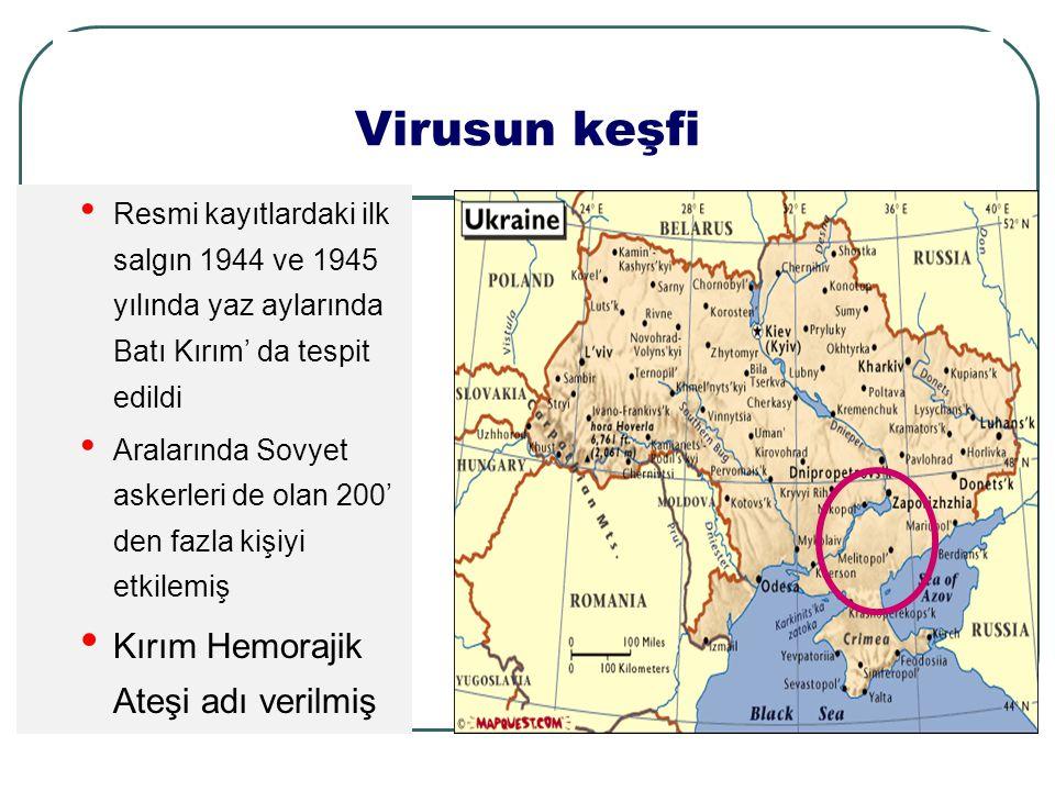 Virusun keşfi Kırım Hemorajik Ateşi adı verilmiş