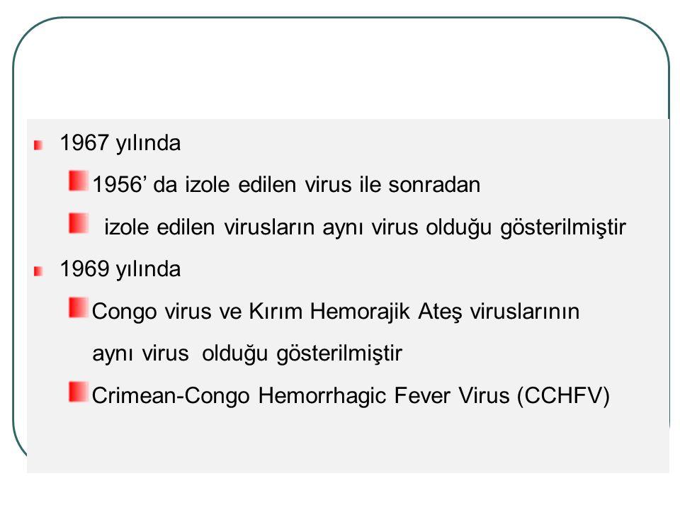 1967 yılında 1956' da izole edilen virus ile sonradan. izole edilen virusların aynı virus olduğu gösterilmiştir.