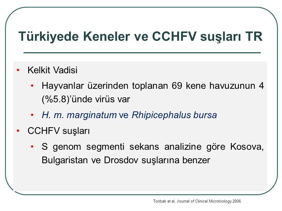 Türkiyede Keneler ve CCHFV suşları TR