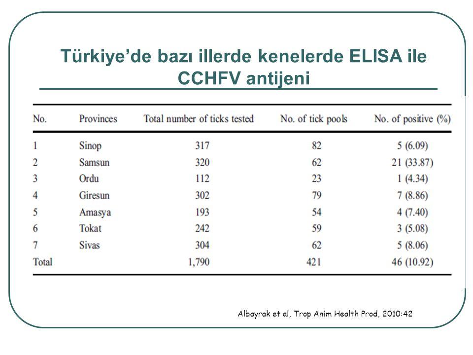 Türkiye'de bazı illerde kenelerde ELISA ile CCHFV antijeni