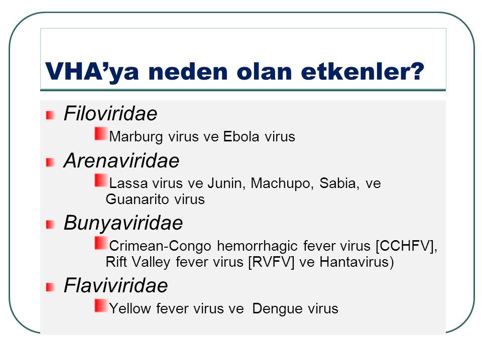 VHA'ya neden olan etkenler