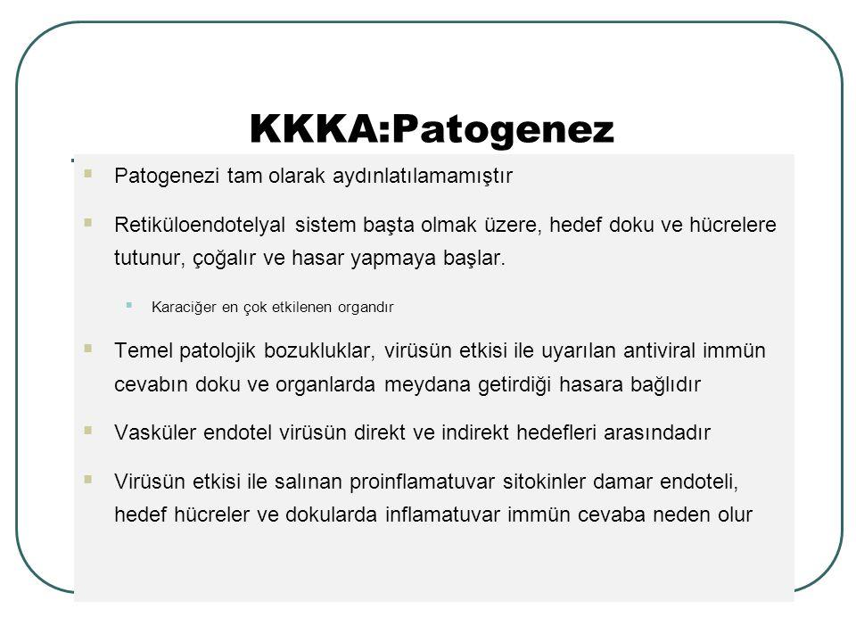 KKKA:Patogenez Patogenezi tam olarak aydınlatılamamıştır
