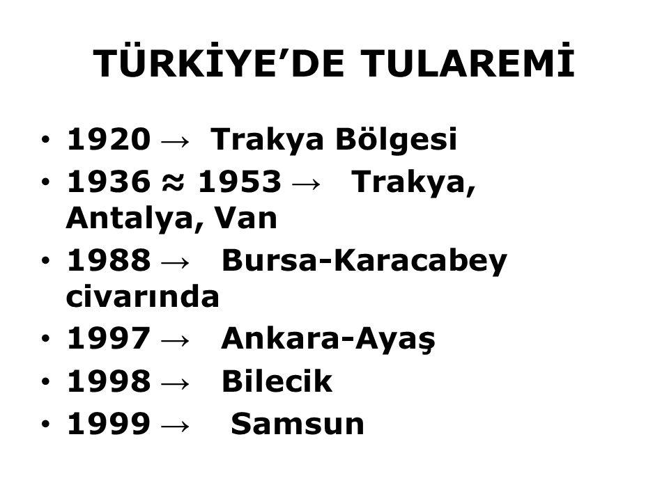 TÜRKİYE'DE TULAREMİ 1920 → Trakya Bölgesi