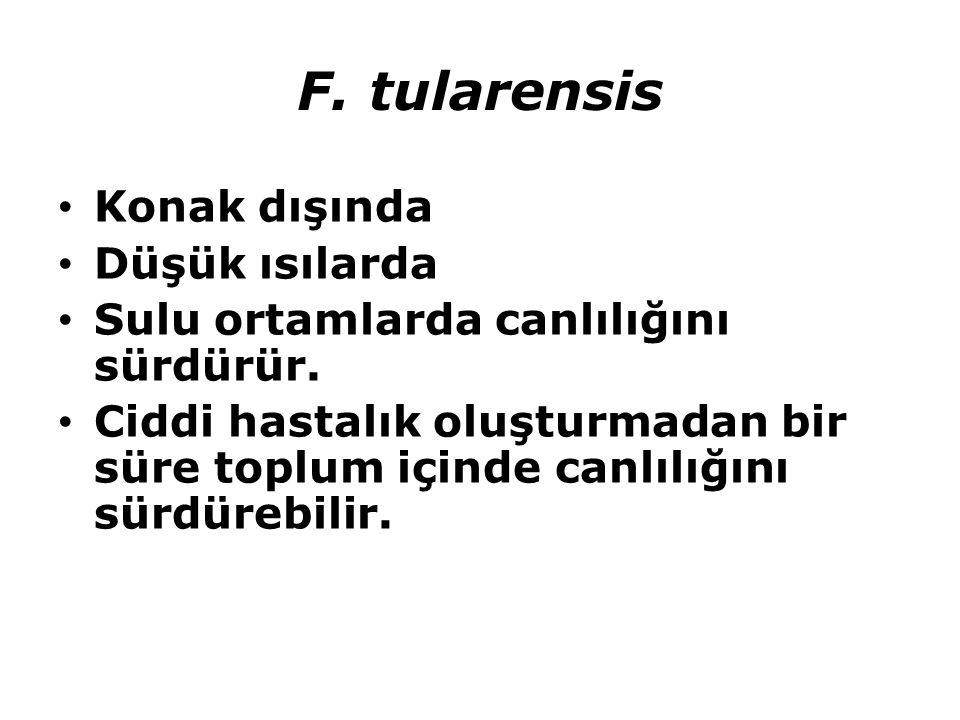 F. tularensis Konak dışında Düşük ısılarda