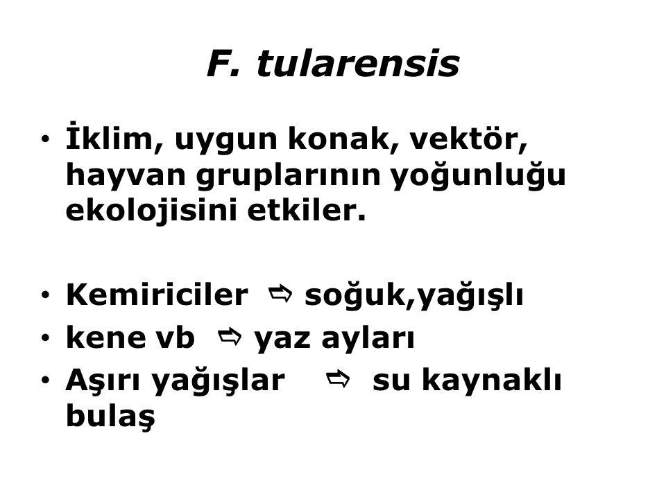 F. tularensis İklim, uygun konak, vektör, hayvan gruplarının yoğunluğu ekolojisini etkiler. Kemiriciler  soğuk,yağışlı.