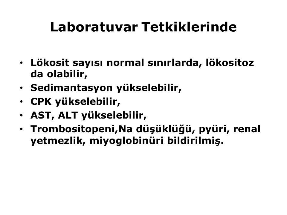 Laboratuvar Tetkiklerinde